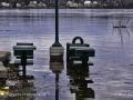 Flooding Fredericton ©SJR_8206