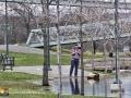 Flooding Fredericton ©SJR_8221