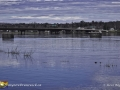 Flooding Fredericton ©SJR_8241