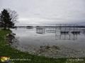 Morrel Park St John River ©LDD8500