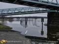 St John River Flood ©LDD8504
