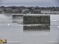 St John River Flood ©LDD8507