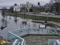 St John River Flood ©LDD8508
