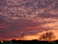 Sunset Perth-Andover 0468
