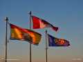 Flags 0009