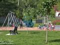 Berceau Park Saint-Basile©LDD_9513