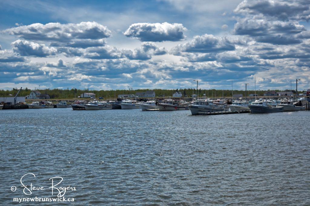 Escuminac Wharf ©SJR_7443