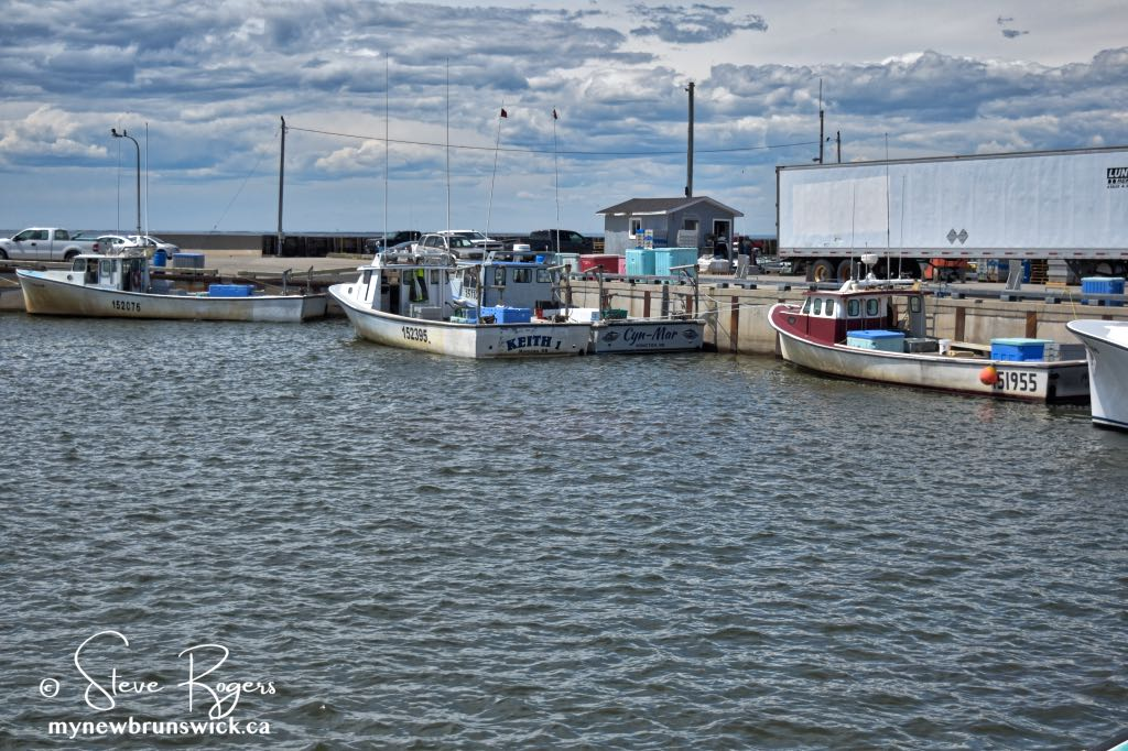 Escuminac Wharf ©SJR_7444