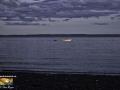 Boats Herring Cove Campobello ©SJR_4334