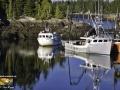 Fishing Boats Mill Cove Campobello ©SJR_4198