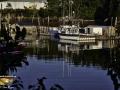 Fishing Boats Mill Cove Campobello ©SJR_4246