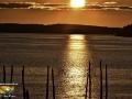 Sunset Friars Bay Campobello NB ©SJR_4286