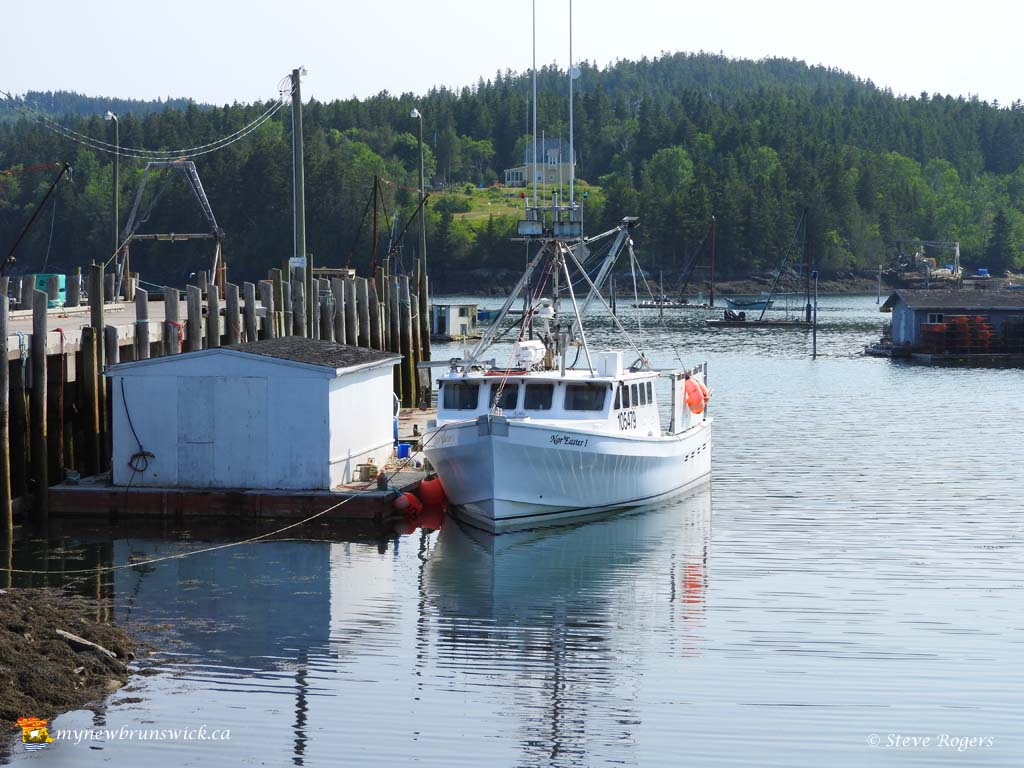 deer island Top things to do in deer island, new brunswick: see tripadvisor's 2,710 traveller reviews and photos of deer island tourist attractions find what to do today, this weekend, or in september.