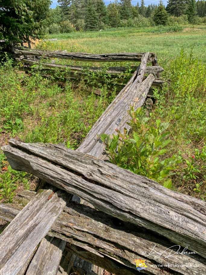doak-historic-site-fence©LDD_IMG_1403