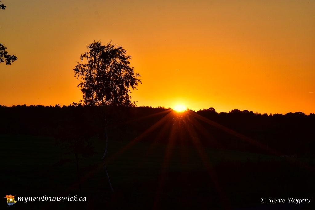 SunsetSpringhillNBSJR_4012