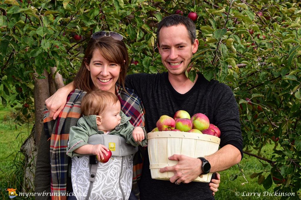 fall2016_family_apple_picking_LDD_1506