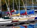 MactaquacNBFallSailboatsSJR_3817