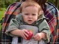 fall2016_baby_apple_picking_LDD_1509