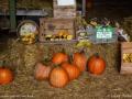 fall2016_barn_display_LDD_1501