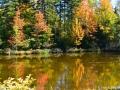 killarney_lake_LDD_1555