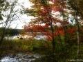 st_john_river_fall_LDD_1542