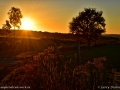 sunset_LDD_1579
