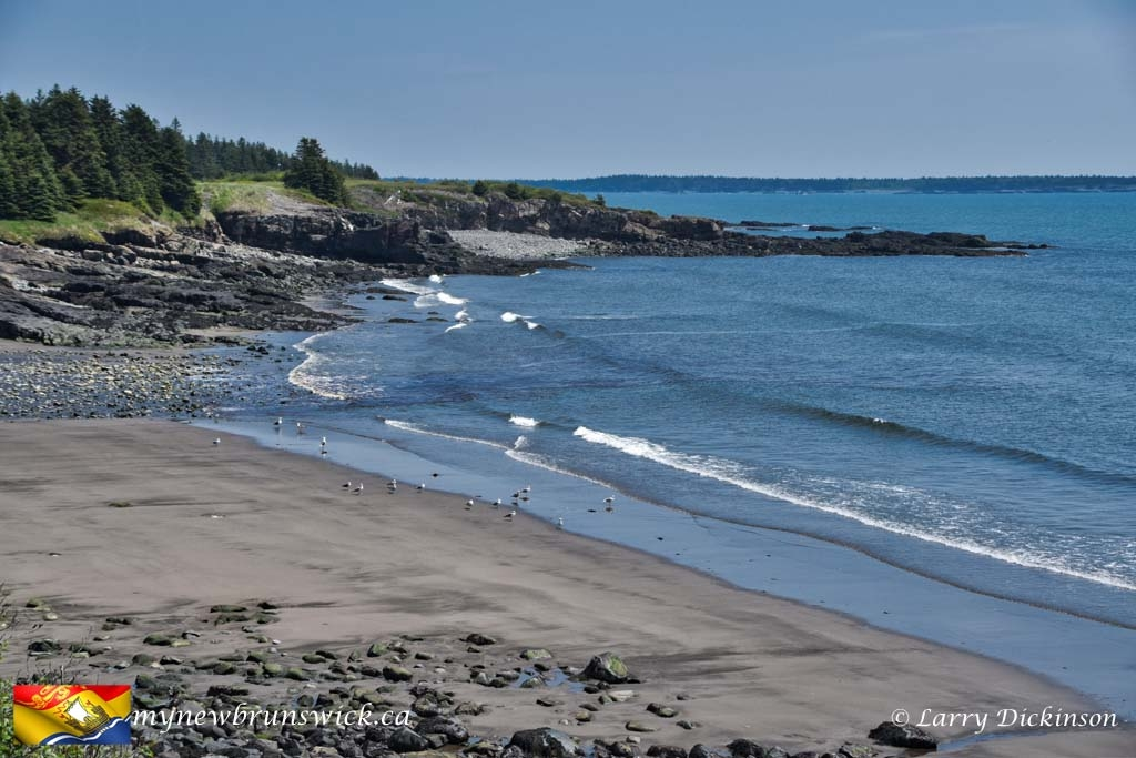 Deep Cove Beach©LDD_4410