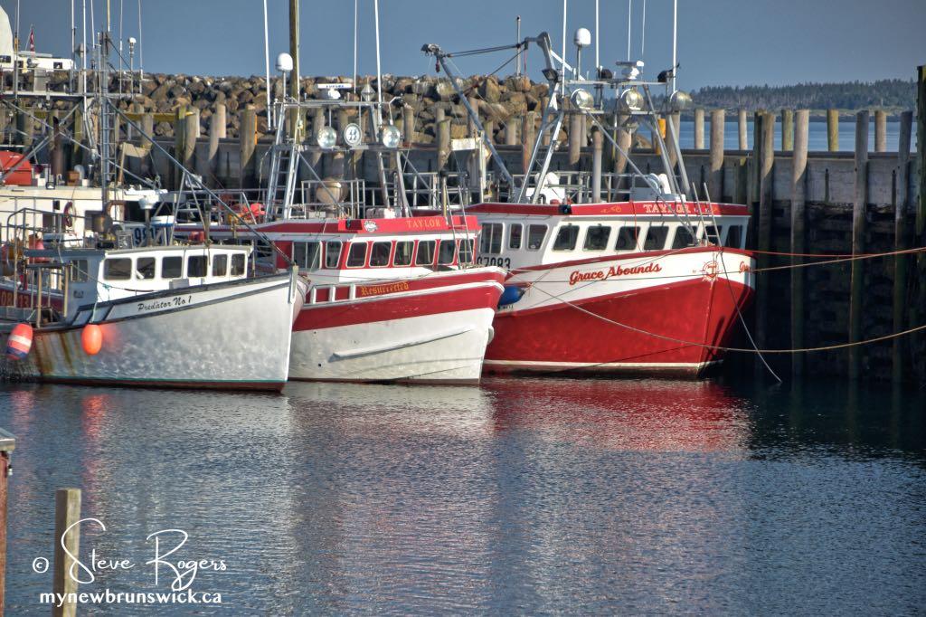 Fishing Boats Grand Manan ©SJR_8132
