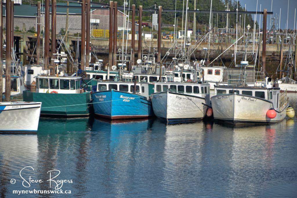 Fishing Boats Grand Manan ©SJR_8139