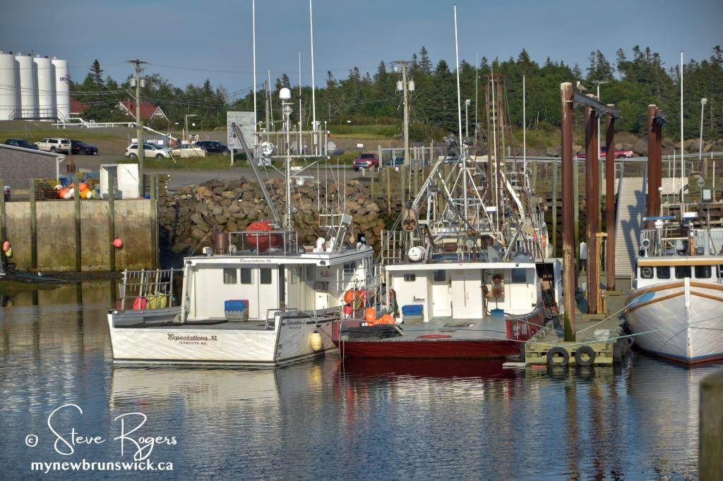 Fishing Boats Grand Manan ©SJR_8169
