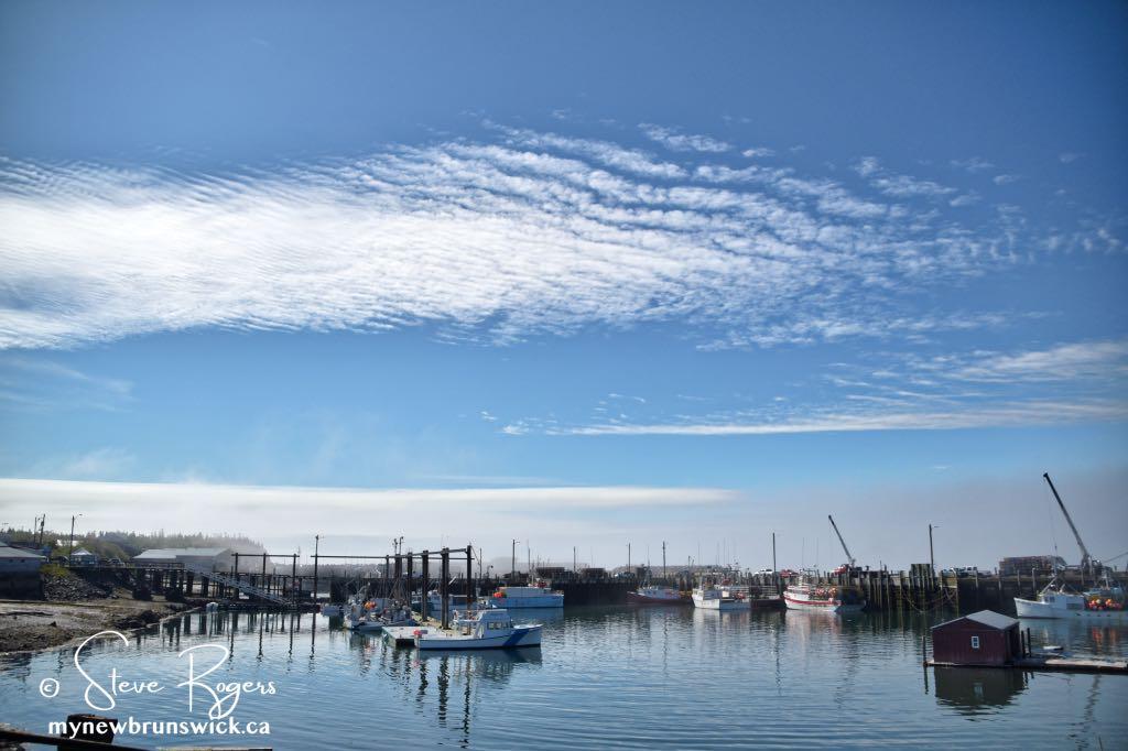 North Head Wharf ©SJR_8032