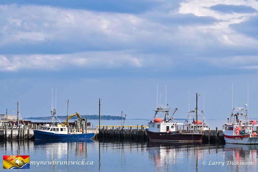 fishing boats©LDD_4447