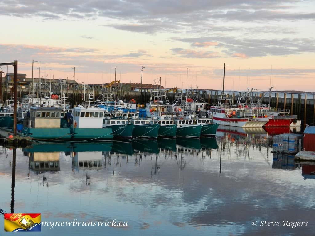 north head fishermens wharf 3