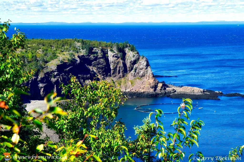 seven_day_work_cliff_nature_preserve_grand_manan_LDD_1188_HDR