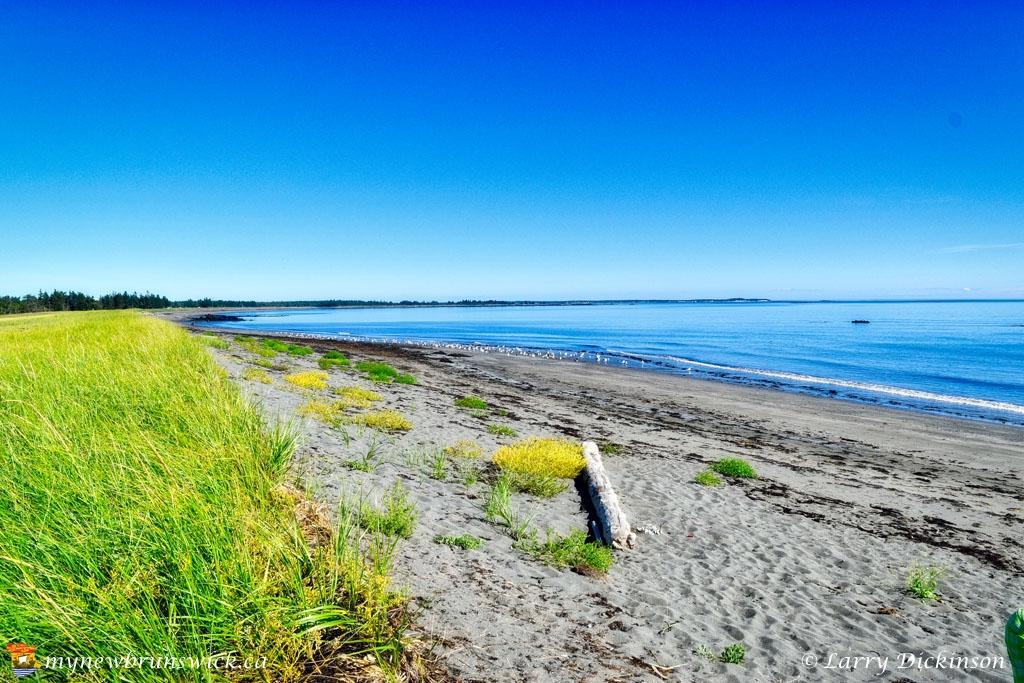 the_anchorage_beach_LDD_1033_HDR