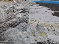 CliffsSealCoveGrandMananNBSJR_2733