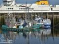 Fishing Boats Grand Manan ©SJR_8164