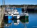 FishingBoatsSealCoveGrandMananNBSJR_2496