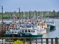Ingalls Head Wharf©LDD_8687