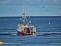 Lobster Fisherman Pettes Cove©LDD_4548