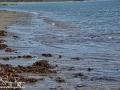Long Point Beach Grand Manan ©SJR_8094
