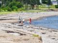 stanley's beach©LDD_8926