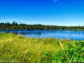 the_anchorage_marsh_LDD_1038_HDR