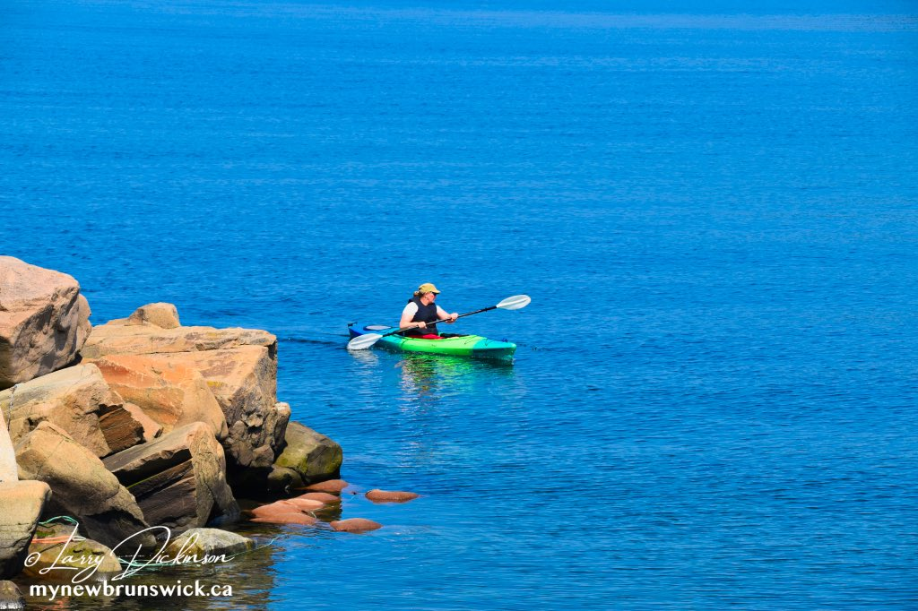 whale cove kayaker©LDD_8903