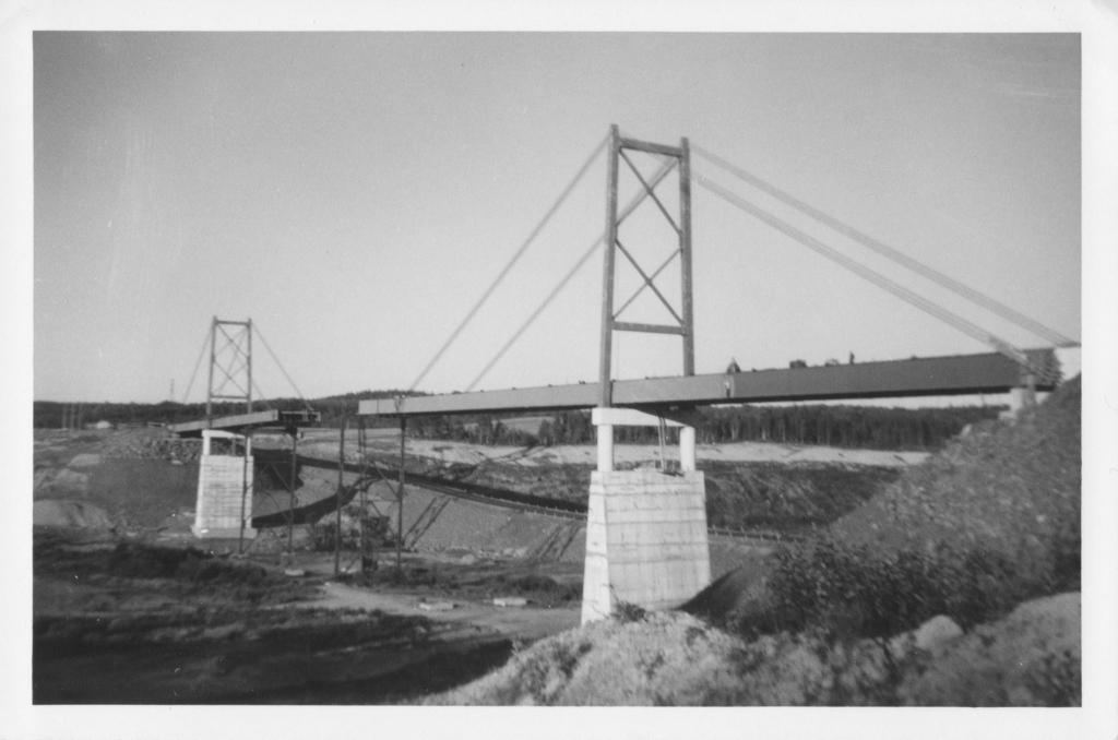 logs creek bridge 02