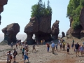 hopewell rocks 004
