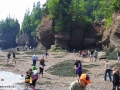 hopewell rocks 007