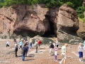 hopewell rocks 008