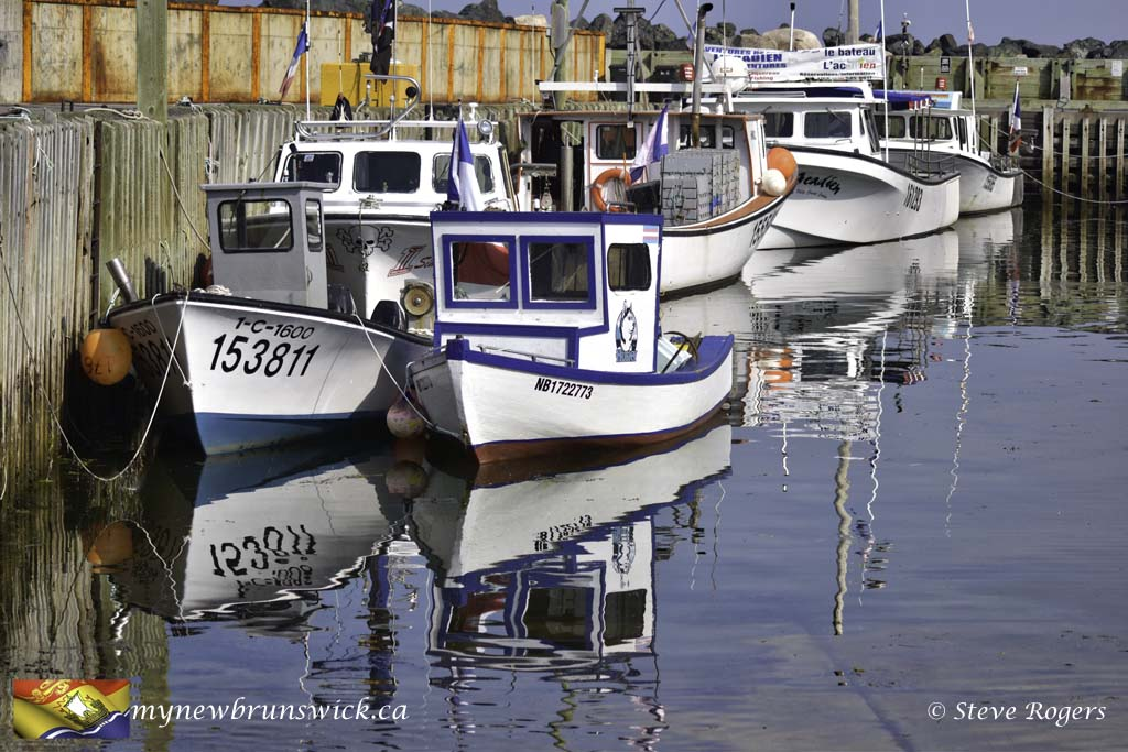 Petit Rocher Wharf ©SJR_3234