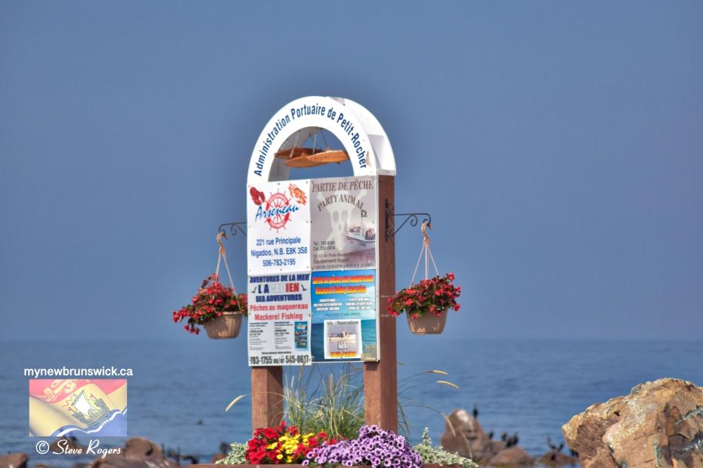 Port Of petit Rocher NB ©SJR_3216